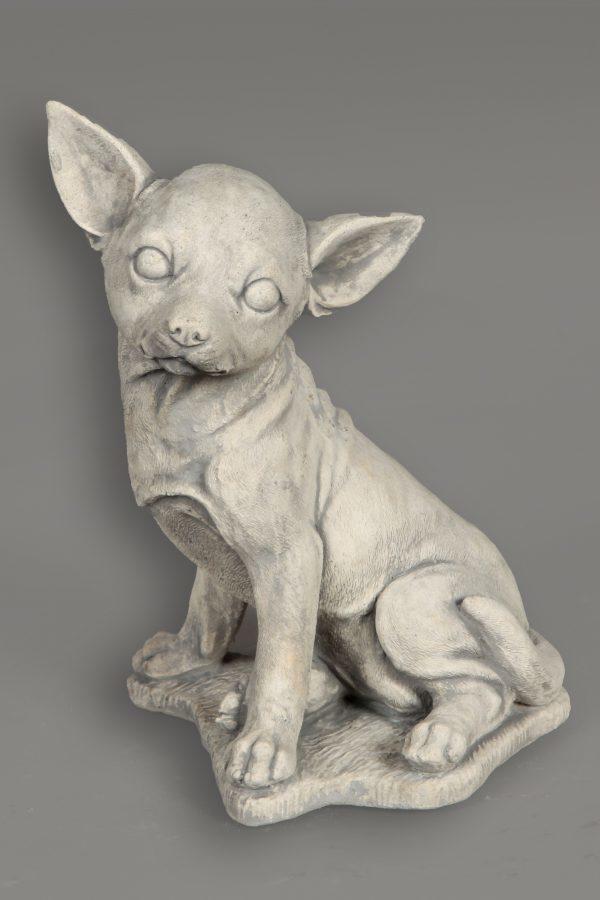 Tuinbeeld Hond Chihuahua