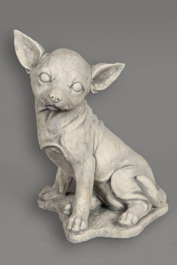Garden Image Dog Chihuahua Concrete Roma Statues